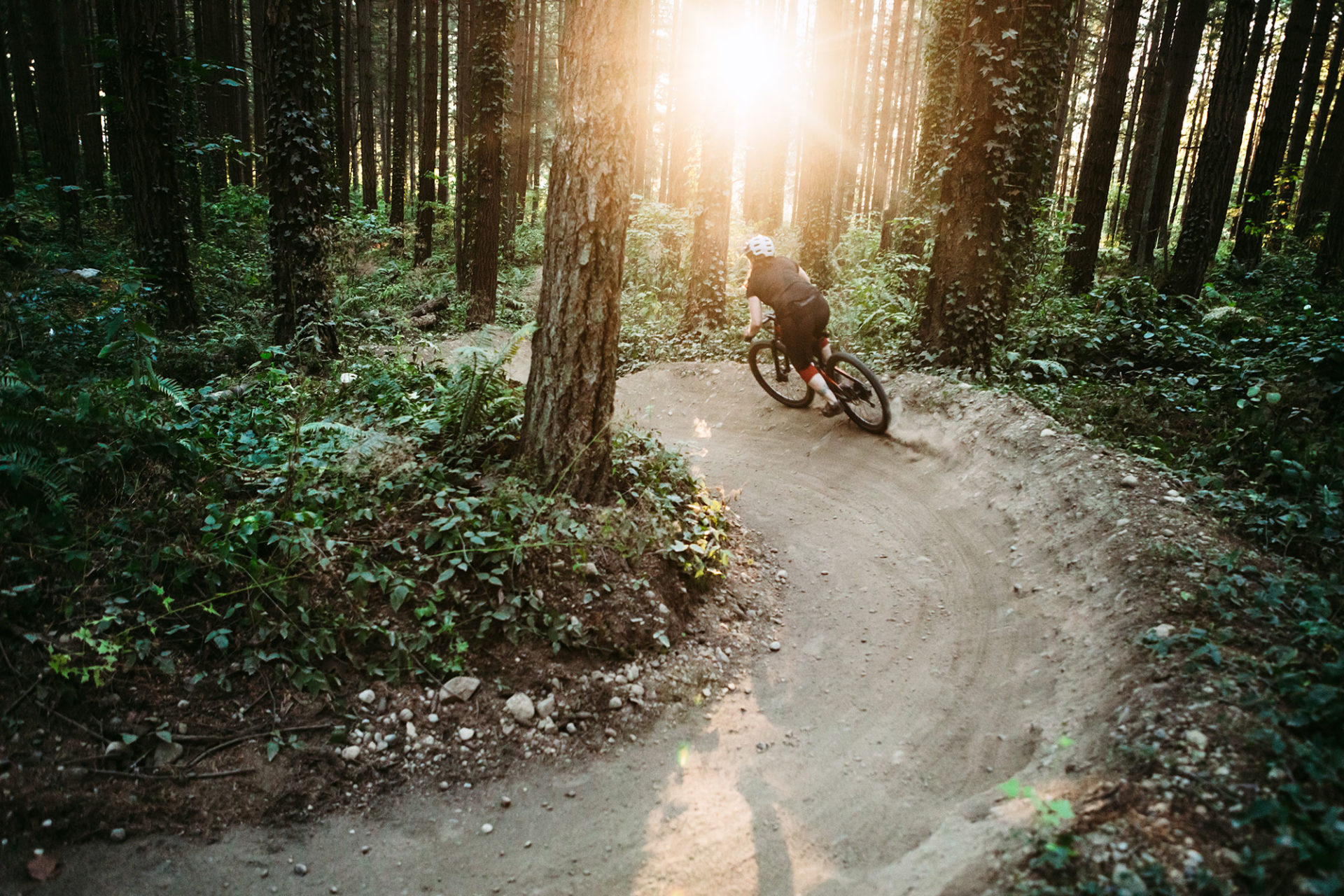 A biker riding on trail in the forest